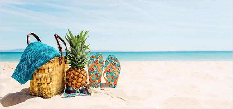 קיץ – המדריך המלא